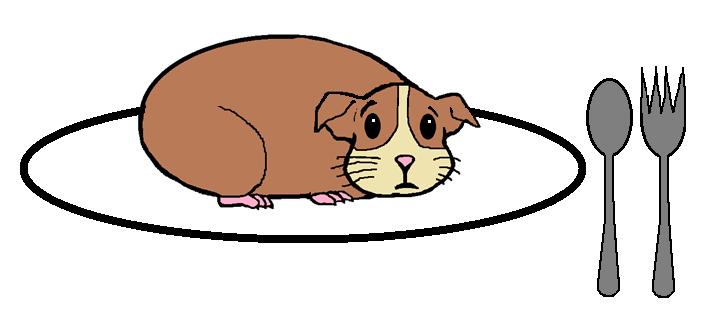 Guinea Pig on Plate