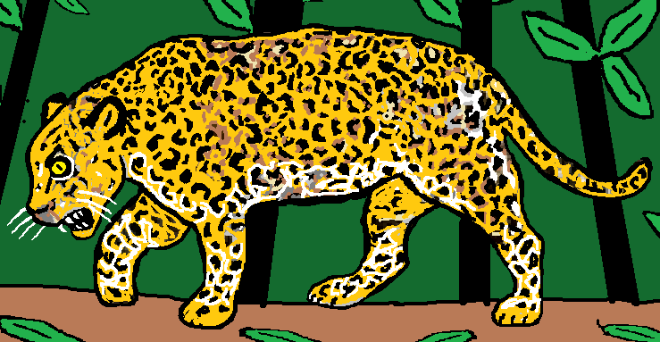 Jaguar--Cropped